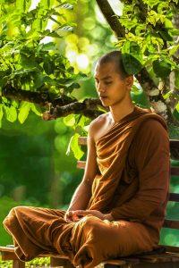 Achtsamkeit: Junger Buddhist der unter dem Baum meditiert