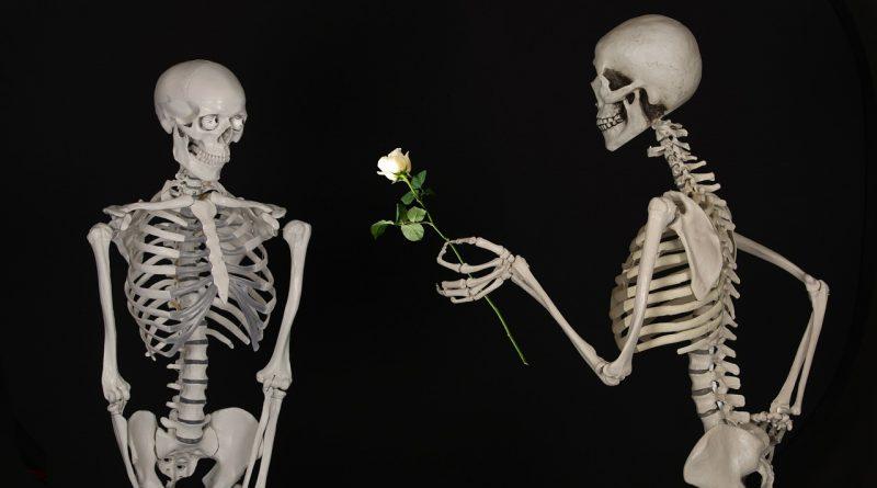 Skelett verschenkt eine weiße Rose an einen Hassposter
